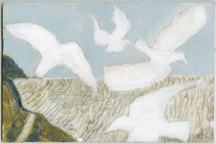 Hurlstone Point Seagulls